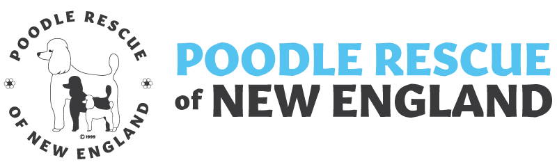 Poodle Rescue of New England